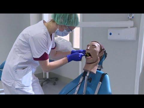 Típusú férgek és fogászati kezelés. Féreg gyógyszer Fental