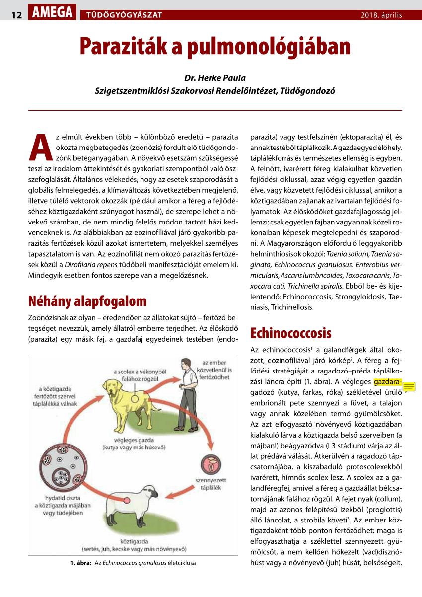 Élelmiszer-mikrobiológia | Digitális Tankönyvtár
