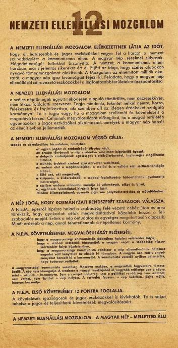 Kutyás stratégiát dolgoz ki az önkormányzat - mobil-autouvegezes.hu
