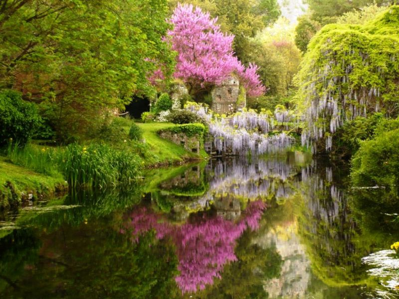 Giardini ninfa aperture Ascaridosis Helix