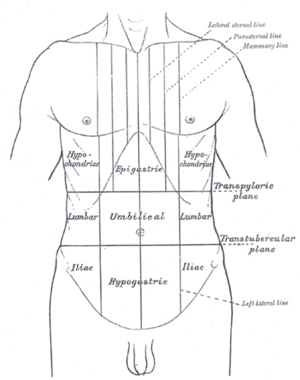 giardia left stomach pain a bélfergesseg tünetei