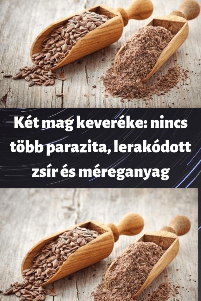 A leghalálosabb magyar paraziták - HáziPatika
