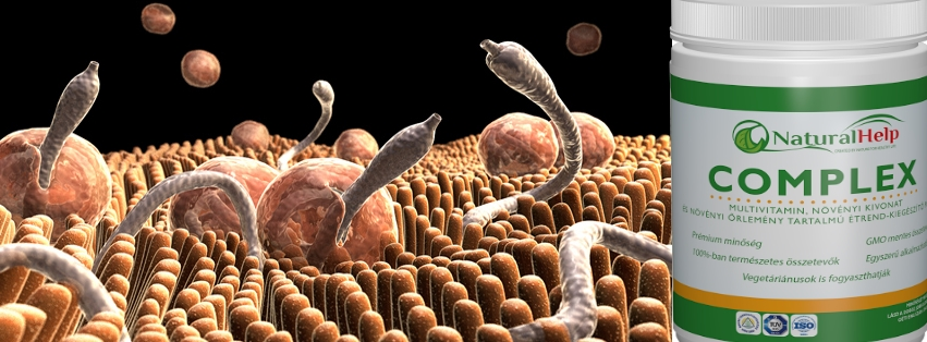 egészségügyi garancia a paraziták ellen