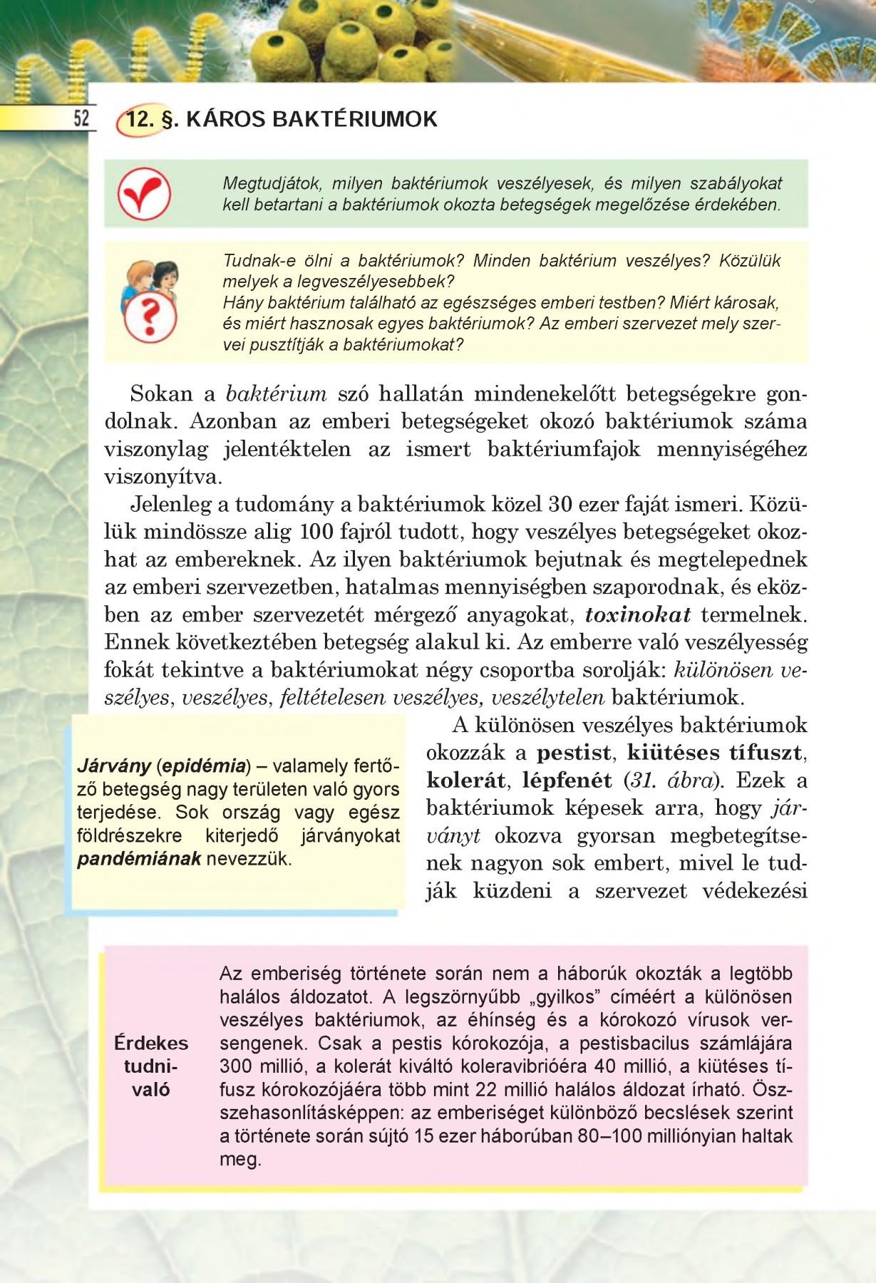 egy módszer a parazita testének megtisztítására Ascaris fertőzés megelőzése