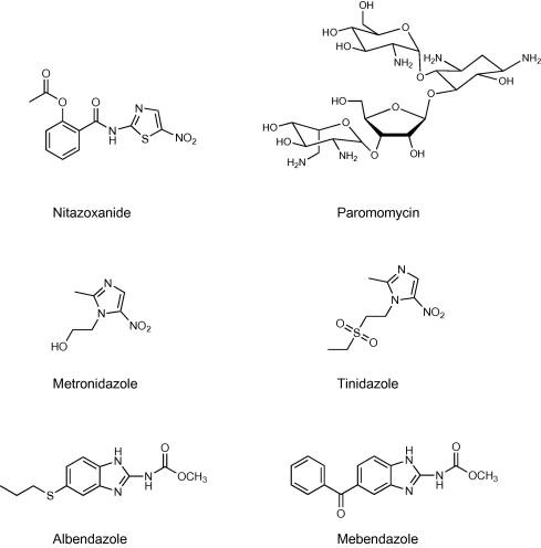 Giardia ascaris és pinworms készítmények