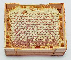 méz drog mérgező
