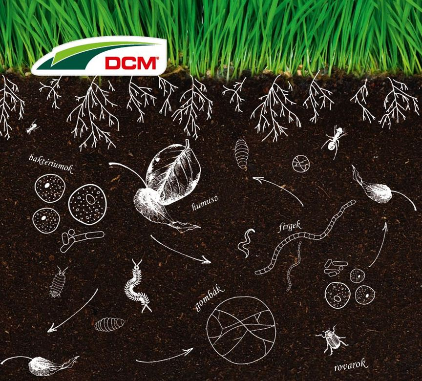 Fonálférgek a növényvédelemben – Agrárágazat
