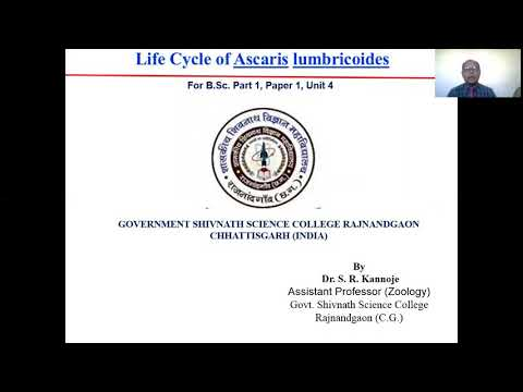 ICSC - FORMALDEHID (37%-OS OLDAT, METANOL MENTES)