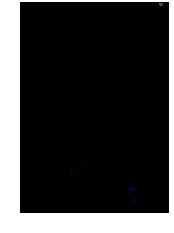 strongyloidiasis geohelminthiasis giardia behandeling