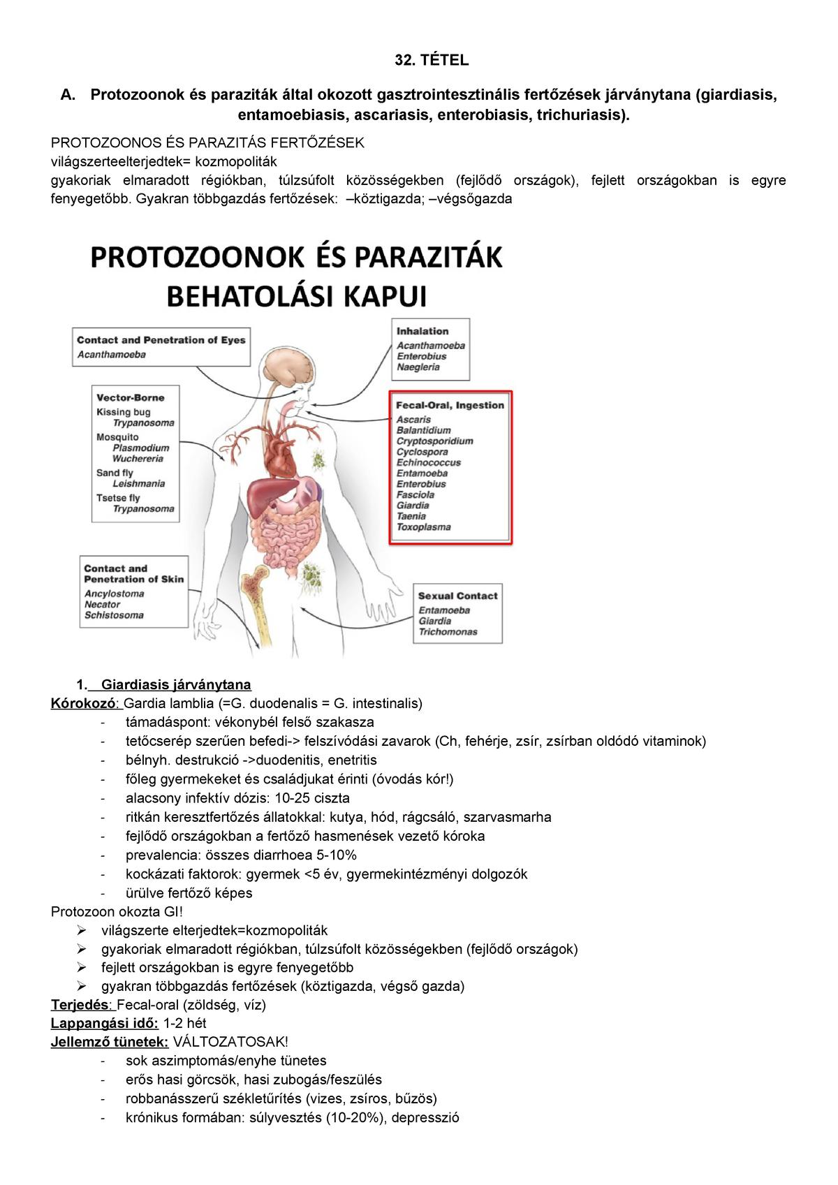 enterobiosis fertőzés forrása